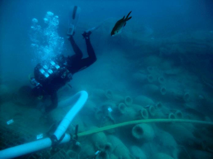 jaciment arqueològic Bou