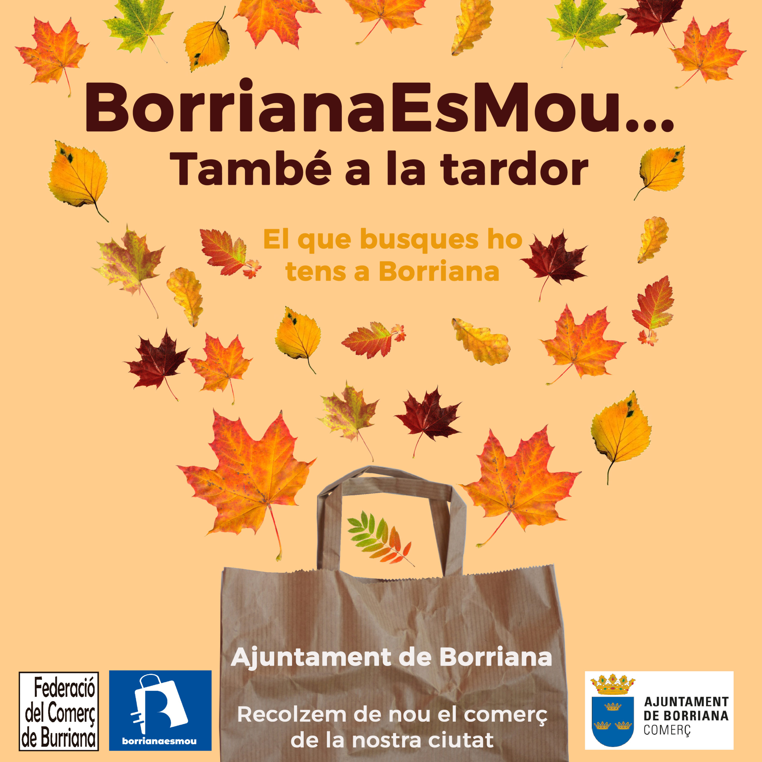 Borriana_Comerç
