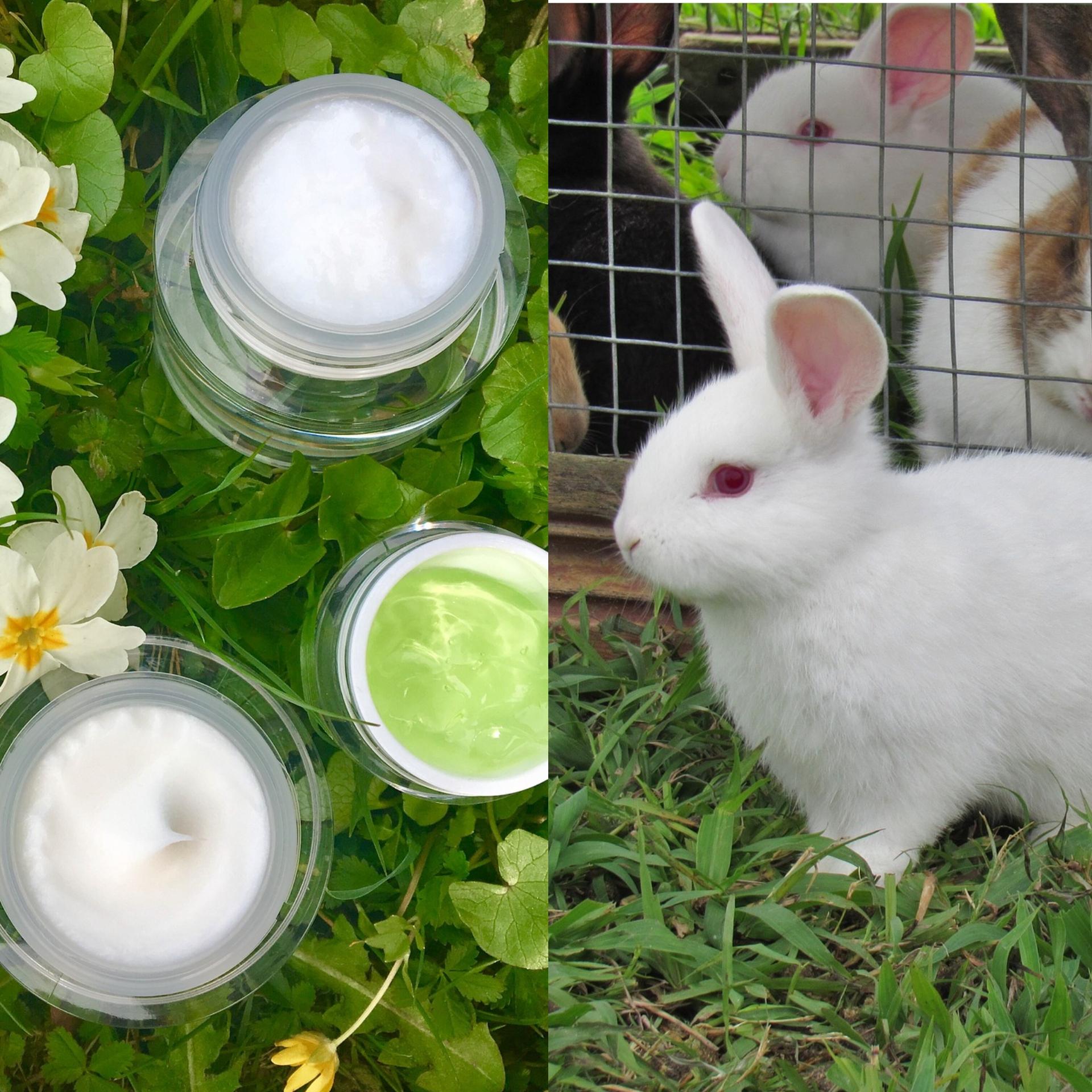 Cosmètica Cruelty Free, no testada en animals