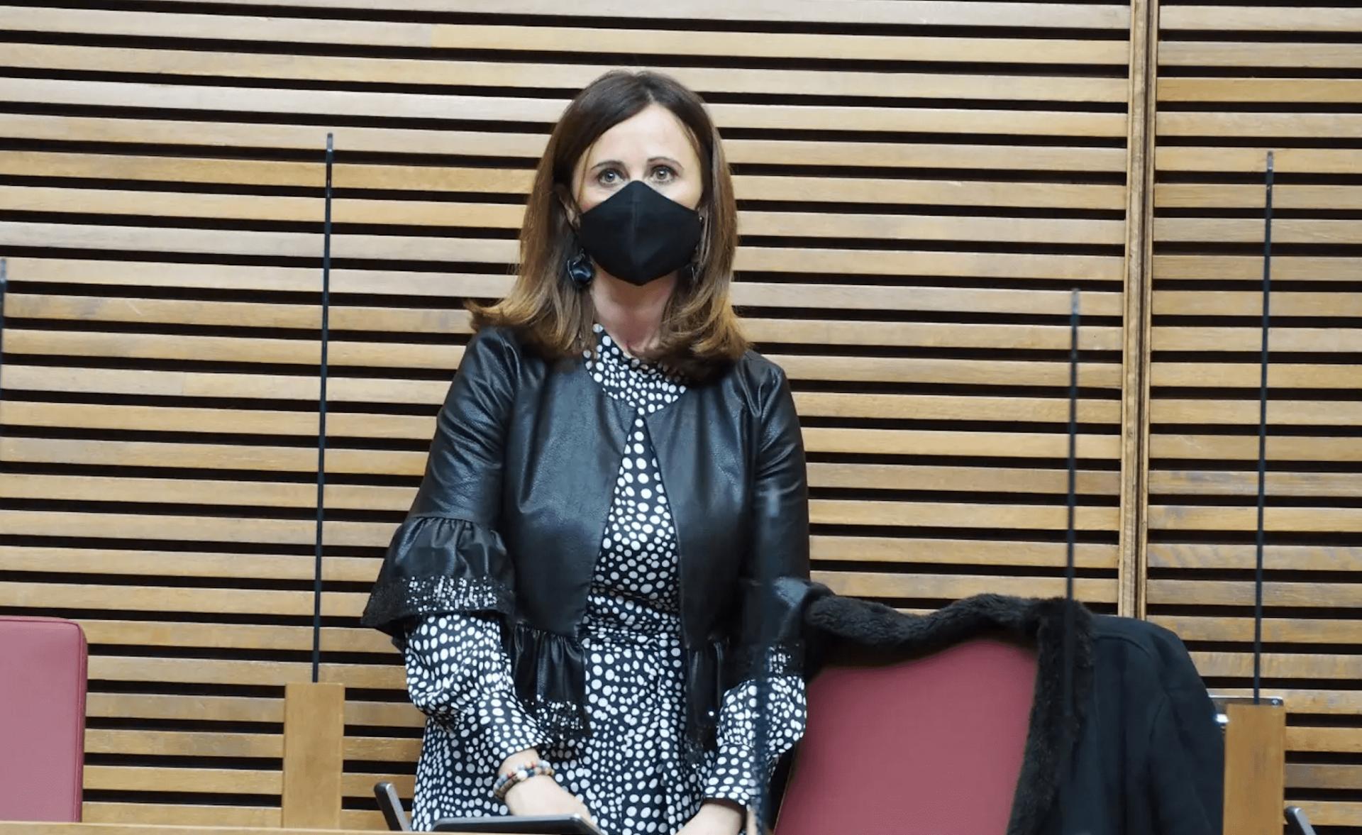 La portavoz de Juventud del PSPV-PSOE en Les Corts Valencianes, Aroa Mira,